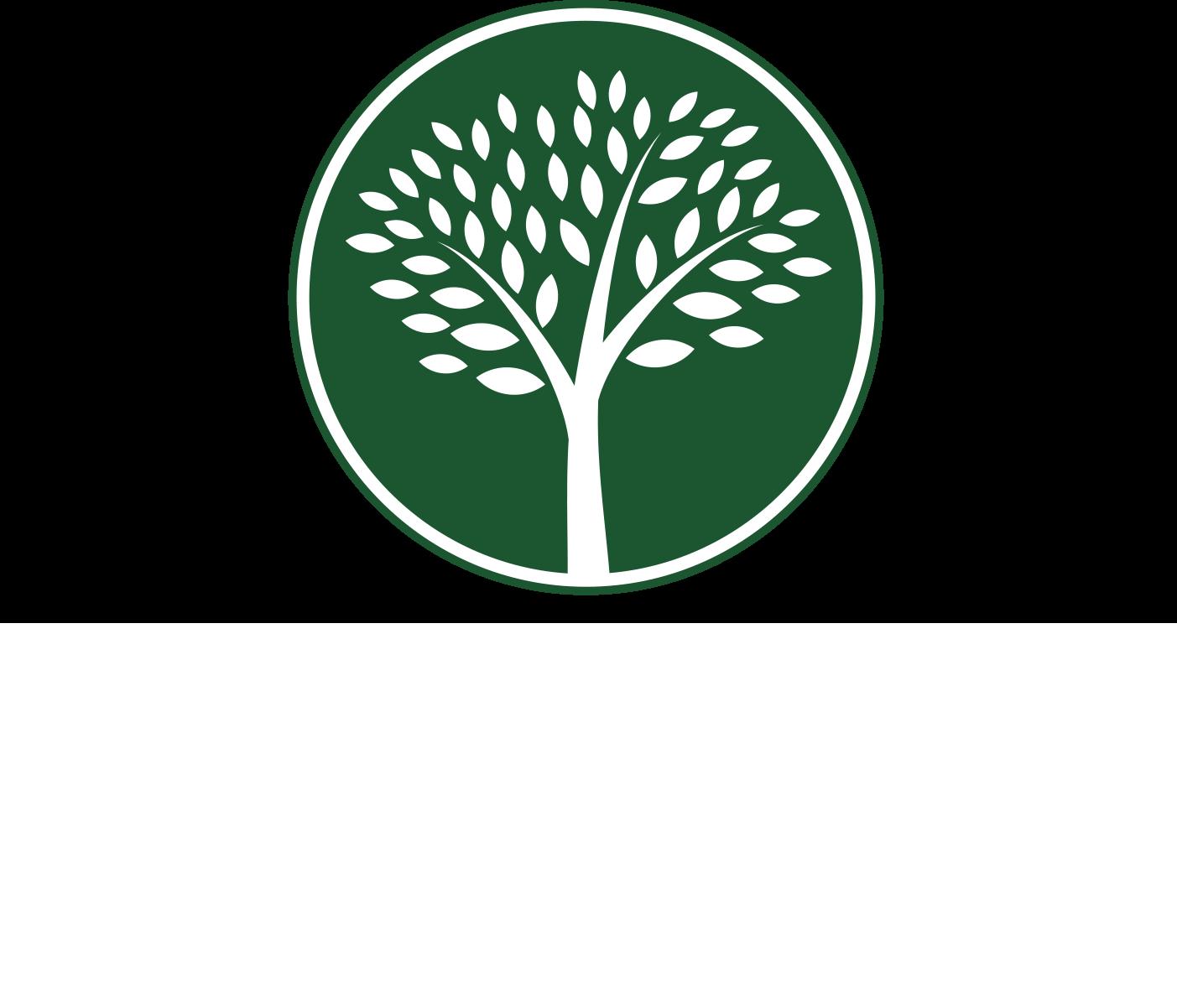 Logan Elm